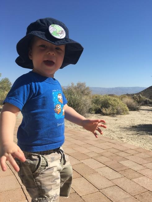 Desert Hike