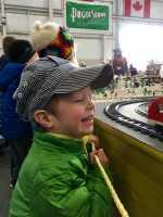 Model train show